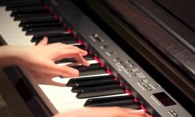 Học Đàn Organ Online